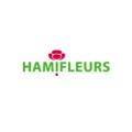 nya-interieurontwerp-logo-hamifleurskopie