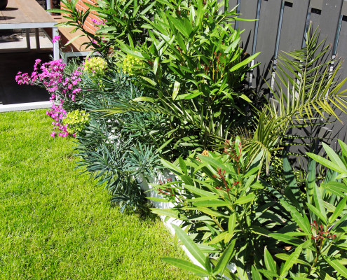 Nya Interieurontwerp tuin groene border