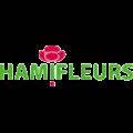 nya-interieurontwerp-logo-hamifleurs-tr